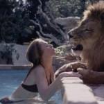 Lev jako domácí mazlíček