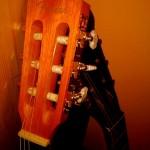 Ségřina kytara