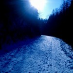 Cesta k Luži