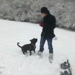 Já a Staffy ve sněhu