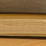 Moleskine deník