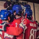 Hokej Česko - Slovinsko 2013