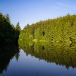 Hádecký rybník
