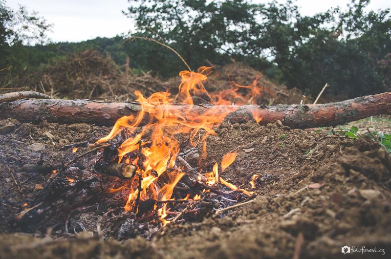 Oheň na okraji pole