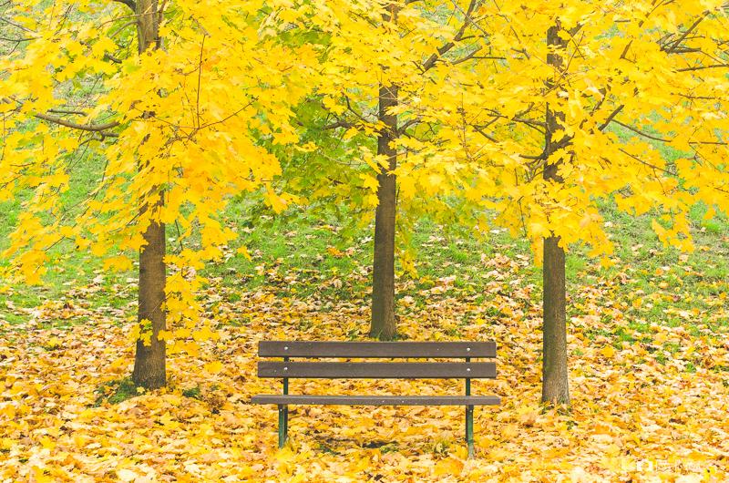 Podzimní lavička