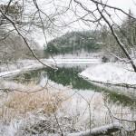 Opatovická přehrada v zimě