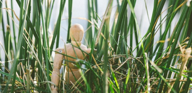 Mužíček v trávě
