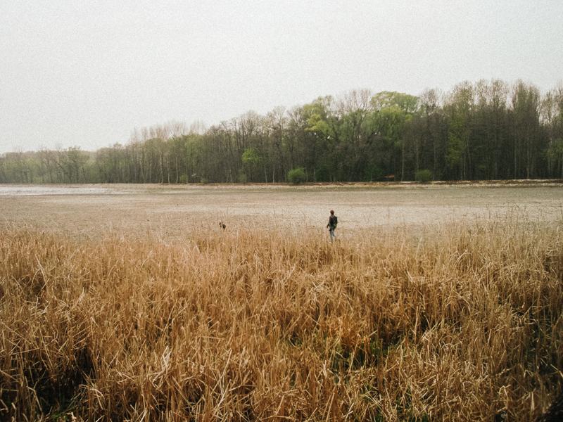 Vypuštěný rybník u Pouzdřan