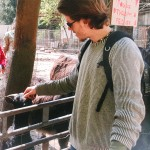 Zvířecí farma u Adamova