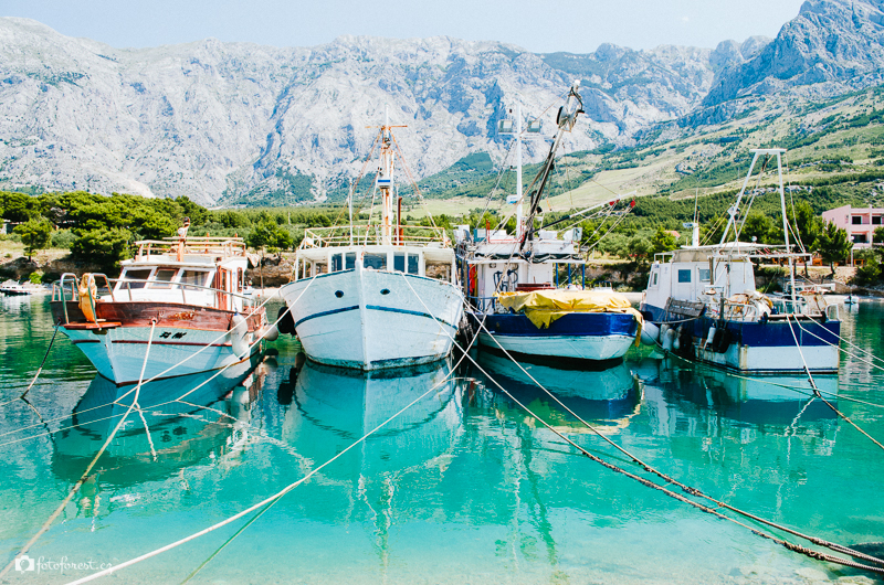 Hrvatska Promajna