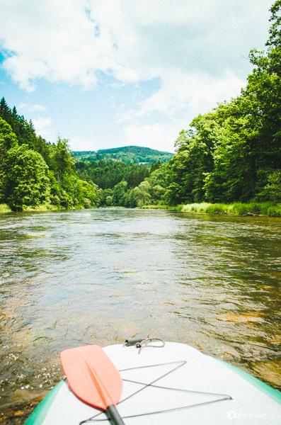 Příroda v okolí Vltavy v jižních Čechách