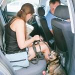 Bimbo v autě