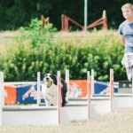 Flyball psí sport