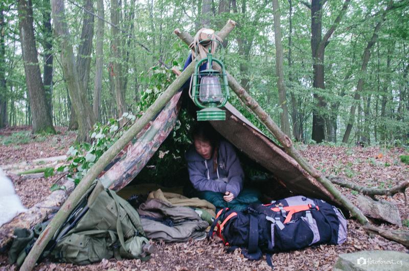 Ráno po probuzení v lese