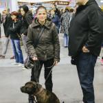 Na výstavě psů Brno 2014