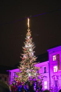 Rozsvěcení vánočního stromečku na náměstí Svobody Brno