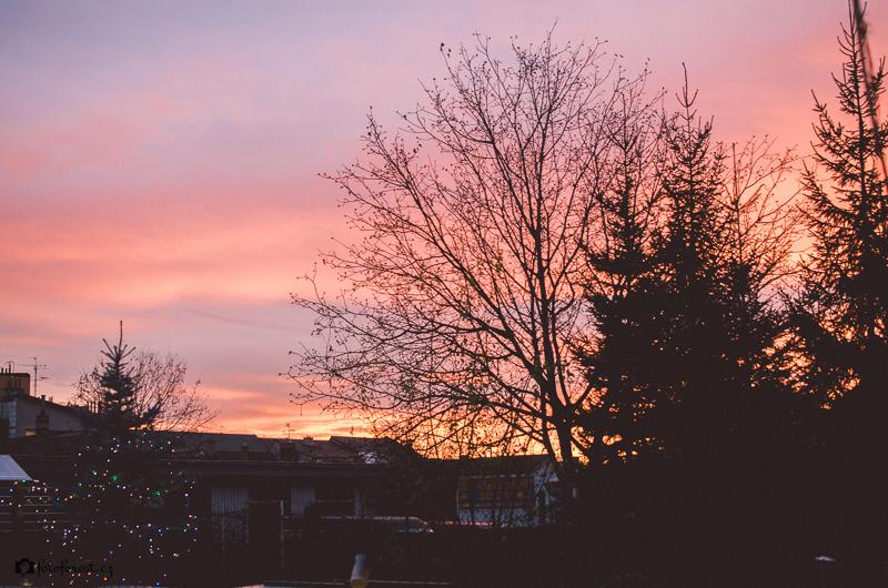 Západ slunce na zahradě