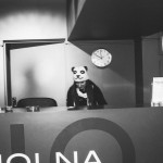 Polska Panda!