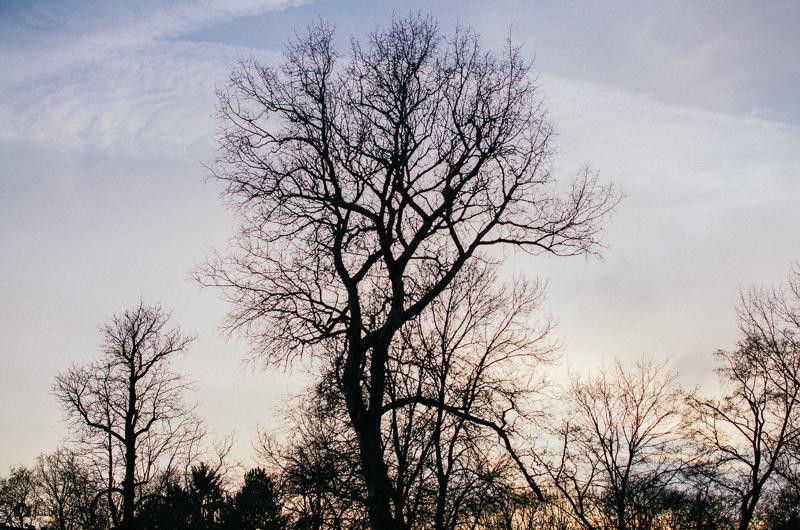Západ slunce v Lužánkách