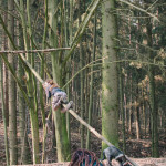 Roman leze na strom