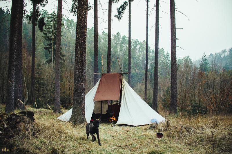 V lese pod stanem