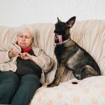 Babička a Buči