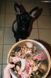 Maso pro psy od Barfík