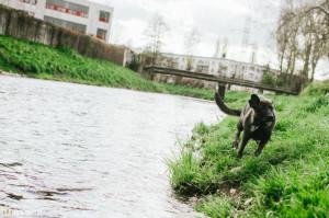 S Bučim u řeky