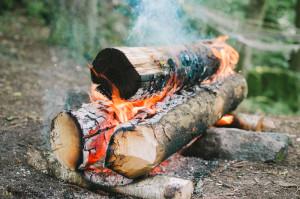 Taiga oheň Nodya