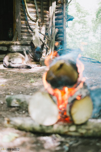 Oheň na Oslavce