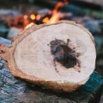 Výroba kuksy z dubového nádoru