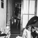 Mrdník v bytě