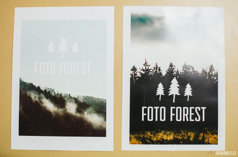 Plakát Foto Forest