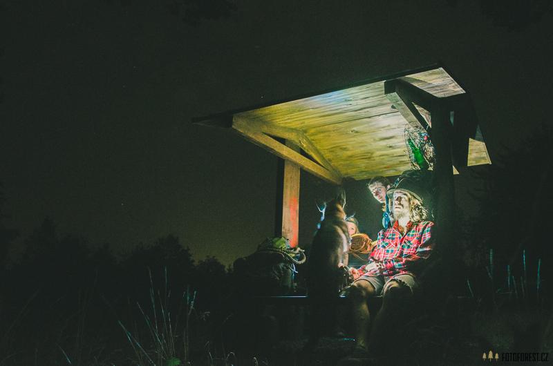 Noční putování v lese