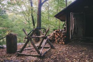 Dřevo u srubu