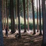 Na houbách v lese