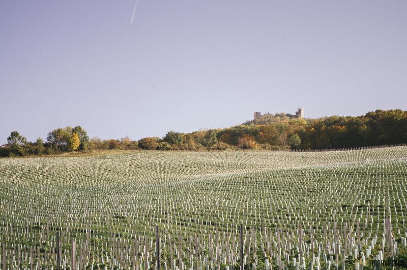 Divín a zřícenina hradu Dívčí hrady