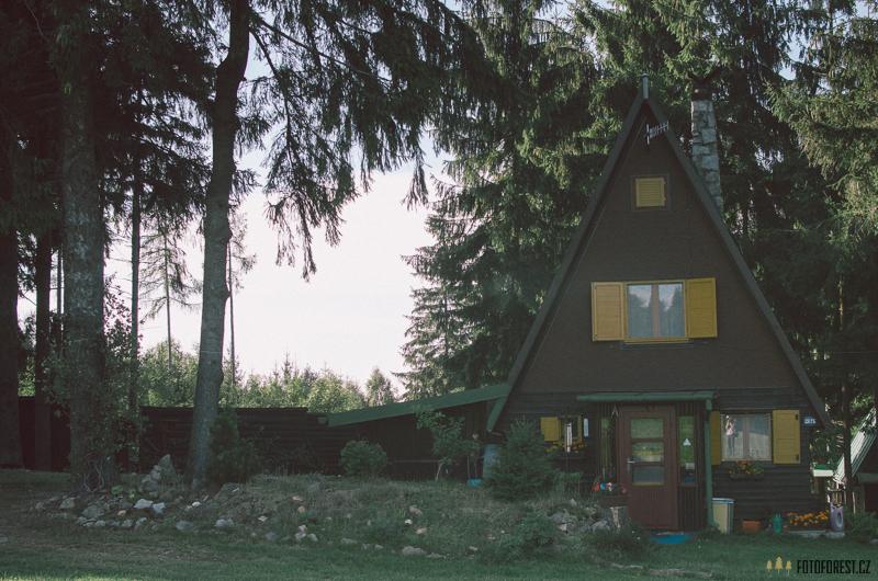 Na samotě u lesa