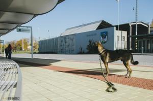 Autobusové nádraží Bruntál