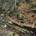 Stezka s mosty v údolí Bílé Opavy Jeseník
