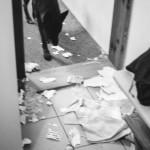 Pes ničí byt