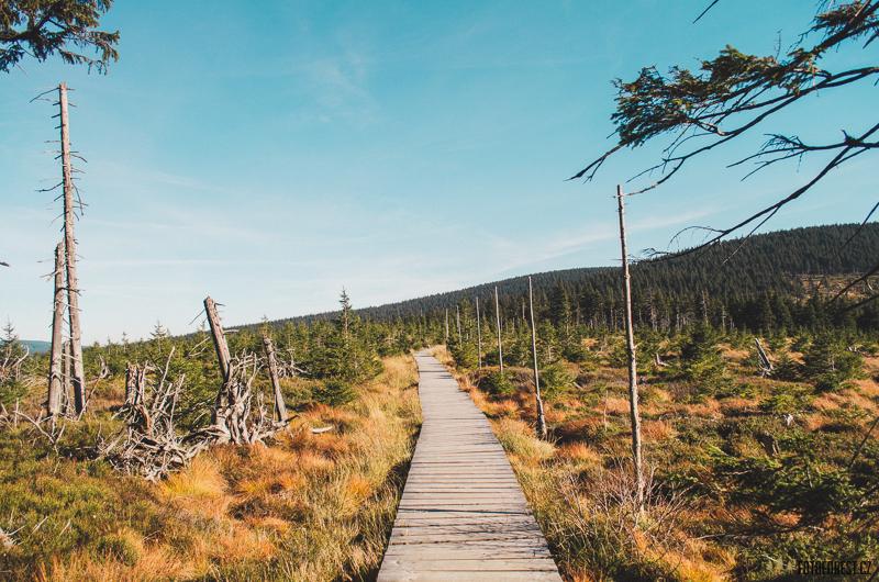 Stezka přes Jeseník