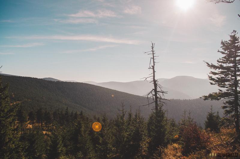 Výhled z Klínovce na Jeseníky