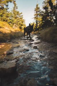 Cesta z Keprníku