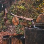 Lesní bar Jeseník