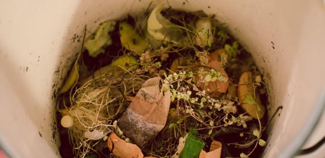 Domácí kompostování