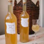 Domácí šípkové víno, recept