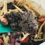 Kompostér a hotový kompost