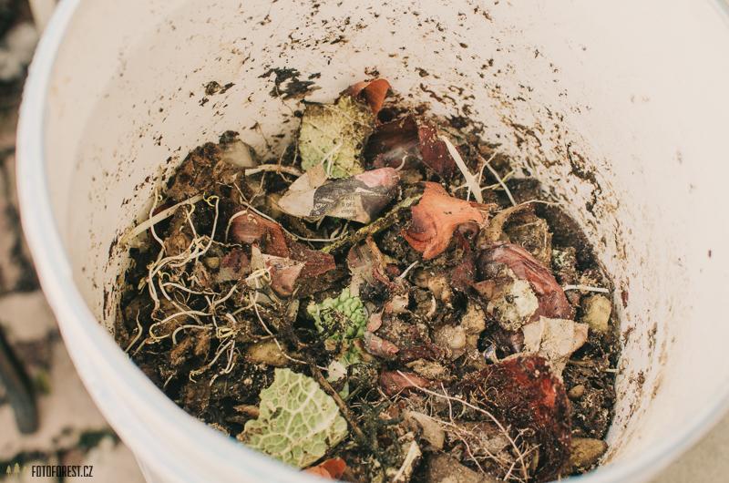 Domácí kompost