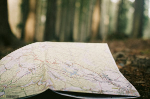 Mapa v lese